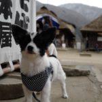 福島と山形に行った! D A Y3